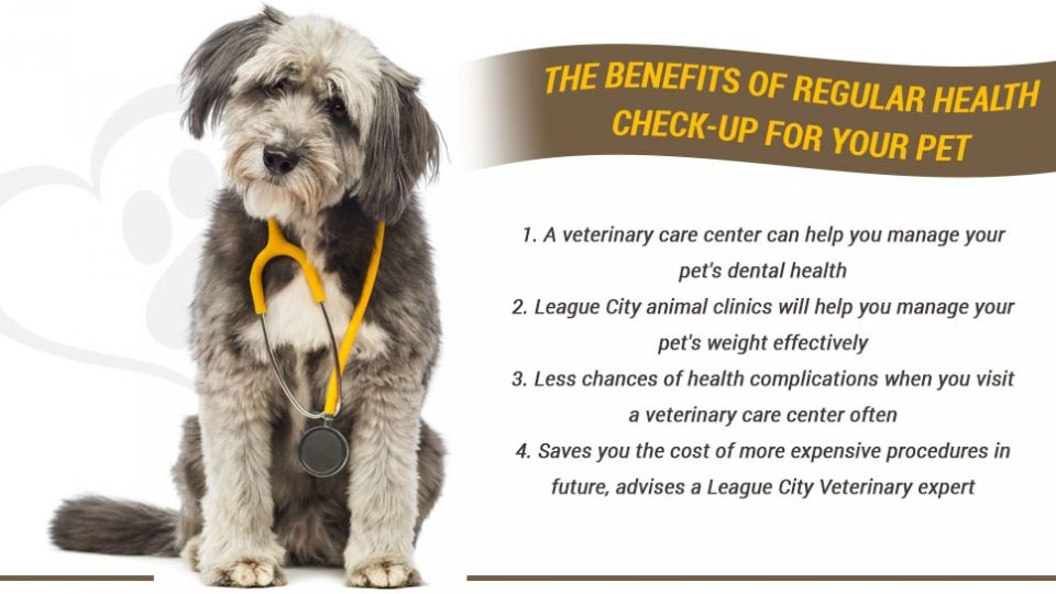 The benefits of regular health check-up for your pet