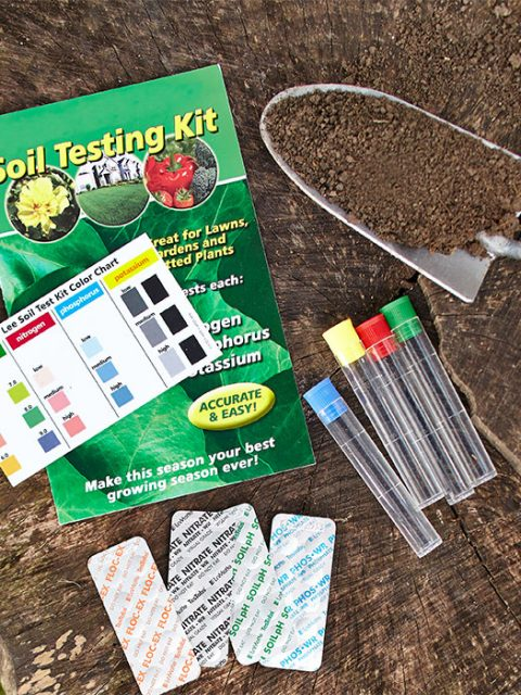 assess-the-acidic-content-of-lawn-soil