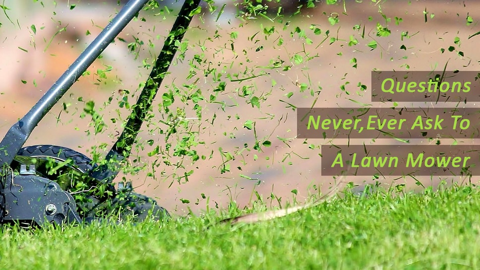 1800clicks - Few Questions that you should never, ever ask to lawn mower