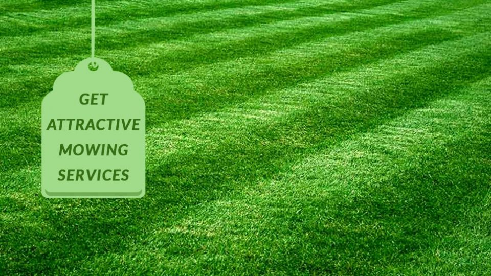 Lawn Mowing Texas - Get more attractive mowing services with GoMow
