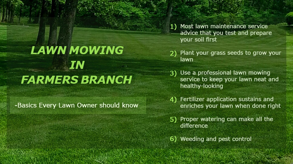 Lawn Mowing in Farmers Branch - Basics Every Lawn Owner should know