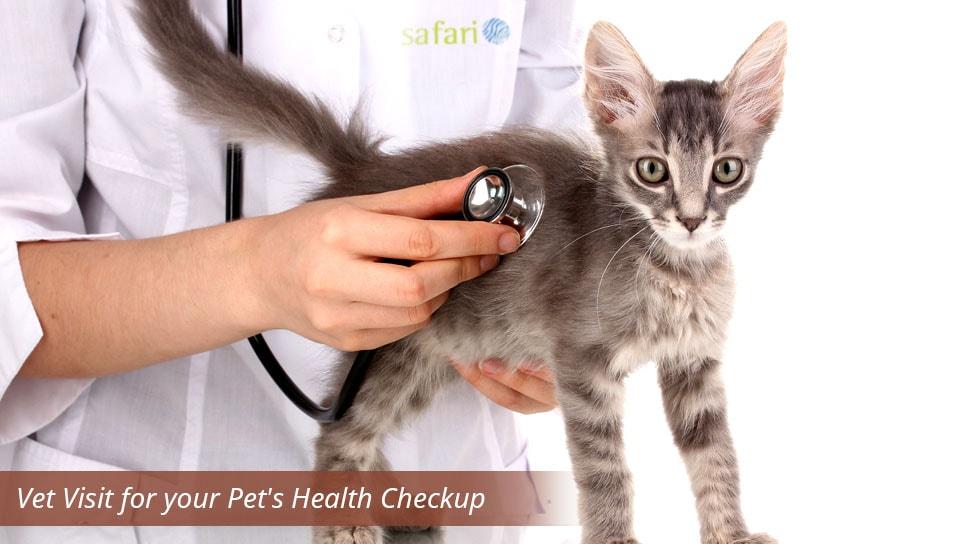 Vet-Visit-for-your-PetsHealthCheckup