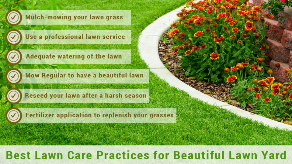 Best-LawnCare-Practices-for-BeautifulLawnYard