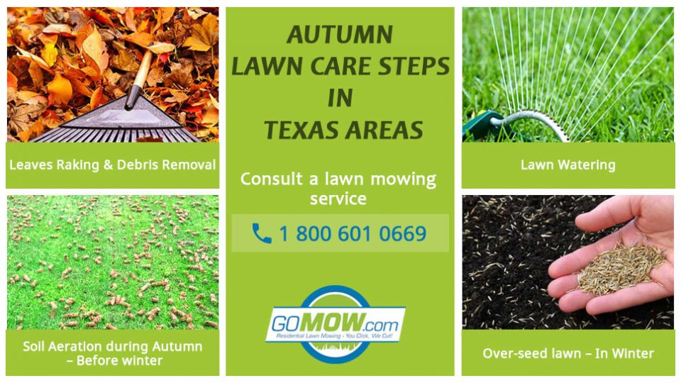 Steps To Autumn Lawn Care In Texas Areas