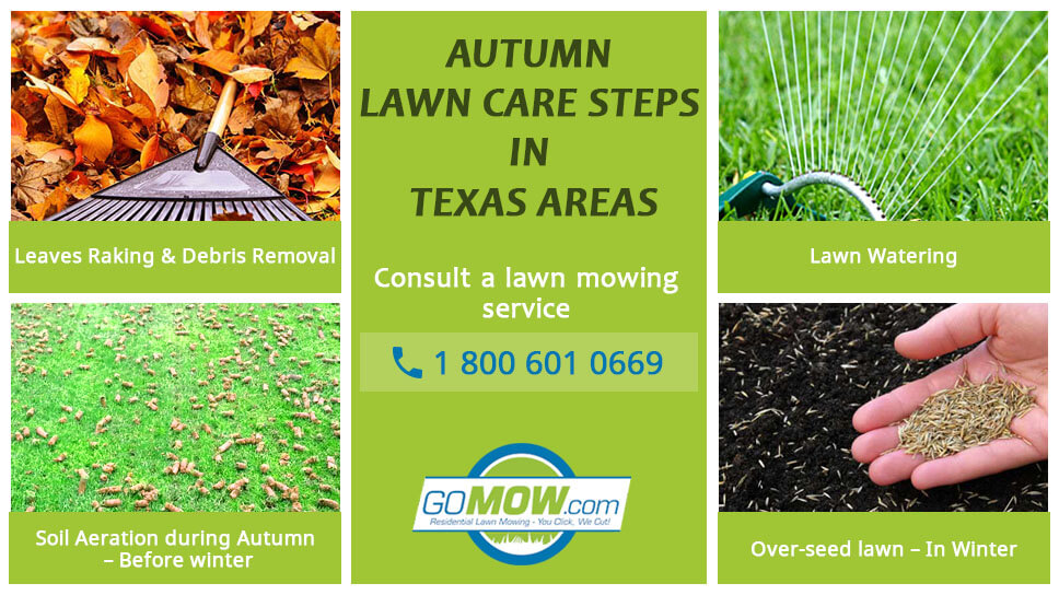 Autumn Lawn Care Steps in Texas areas