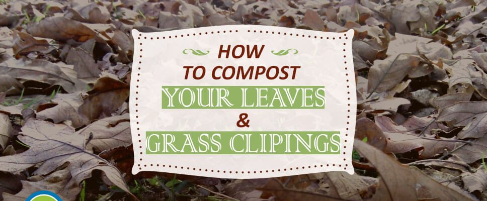 How to compost your leaves and grass clippings