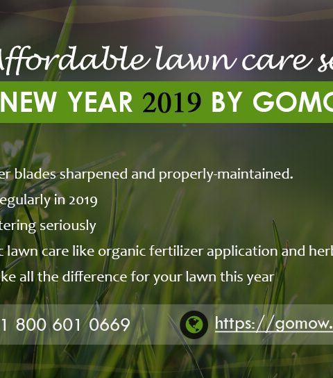Best and Affordable lawn care services in New Year 2019 by GoMow