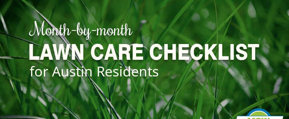 Month-by-month Lawn Care Checklist for Austin Residents