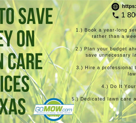 tips-save-money-lawn-care-services-texas