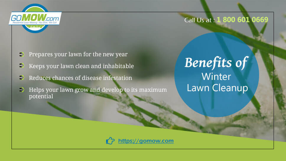Benefits of winter lawn cleanup