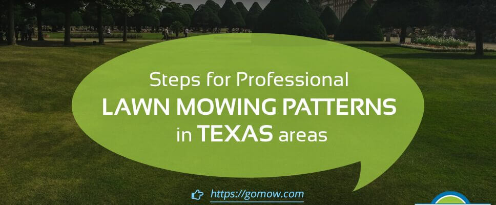 Steps for Professional Lawn Mowing Patterns in Texas areas