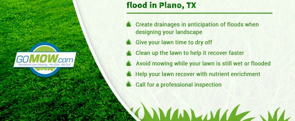 How-to-take-care-of-your-lawn-during-flood-in-Plano,-TX