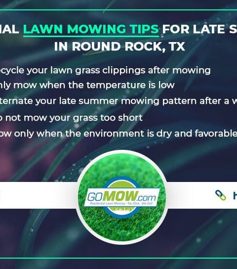 Essential-lawn-mowing-tips-for-late-summer-in-Round-Rock,TX