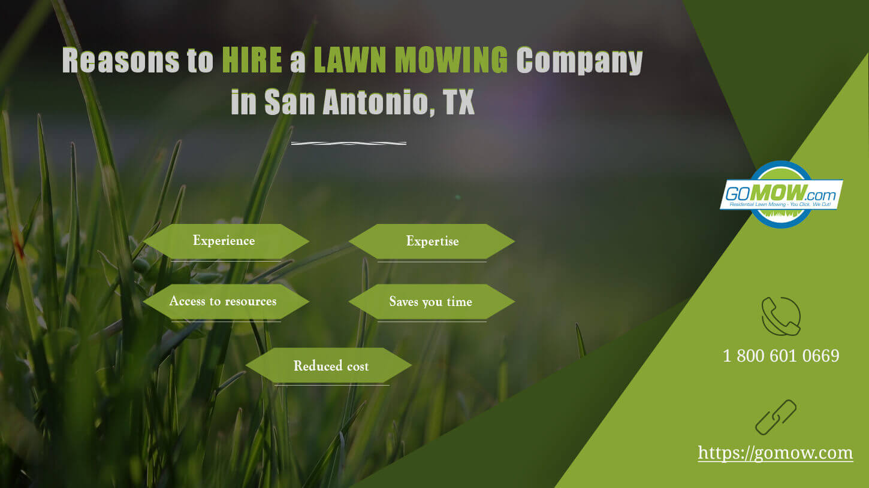 Reasons to hire a lawn mowing company in San Antonio, TX