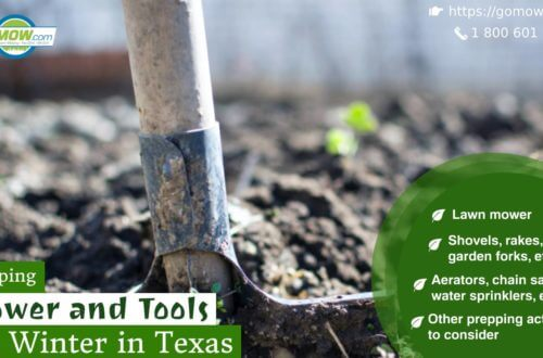 Prepping Mower and Tools for Winter in Texas-min