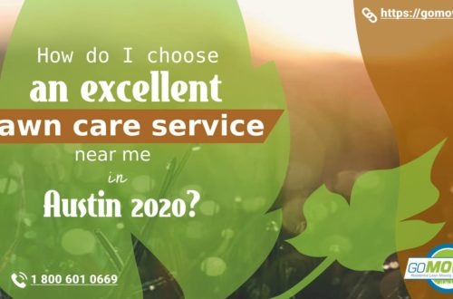 How do choose an excellent lawn care service near me in Austin in 2020