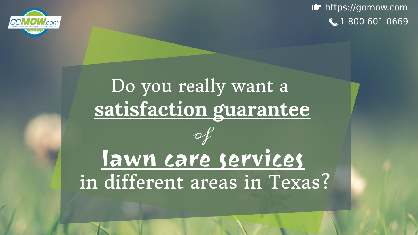 Do you really want a satisfaction guarantee of lawn care services in different areas in Texas