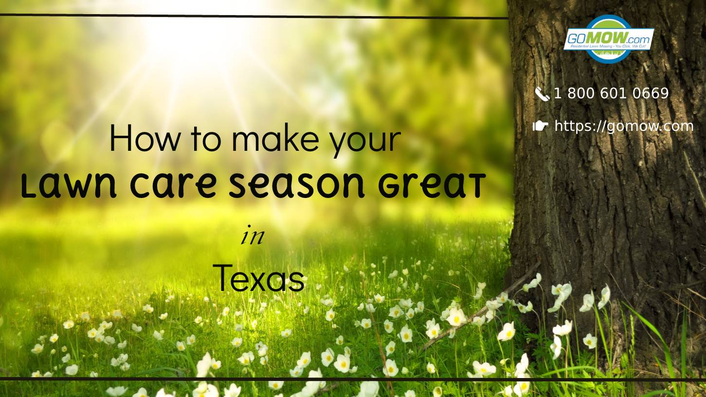 How to make your lawn care season great in Texas