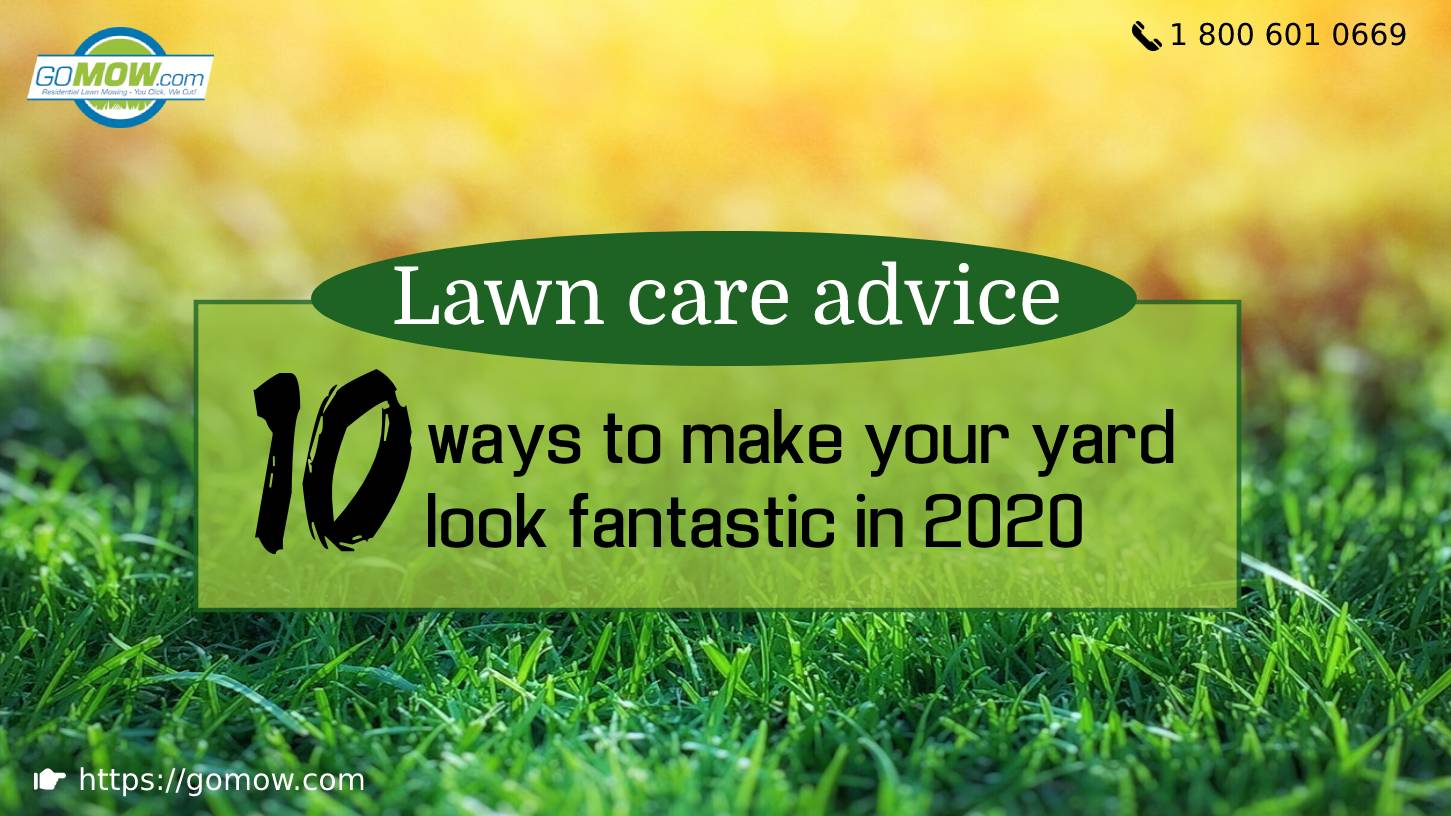 Lawn care advice 10 ways to make your yard look fantastic in 2020