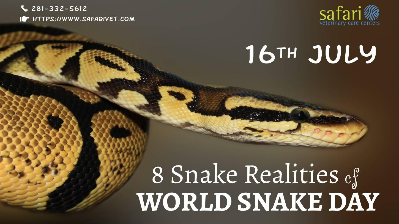 8 Snake Realities of World Snake Day