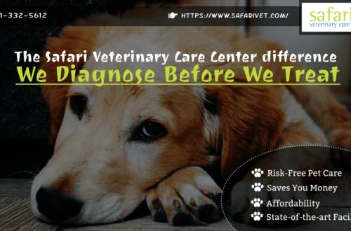 The Safari Veterinary Care Center difference - We Diagnose Before We Treat-min